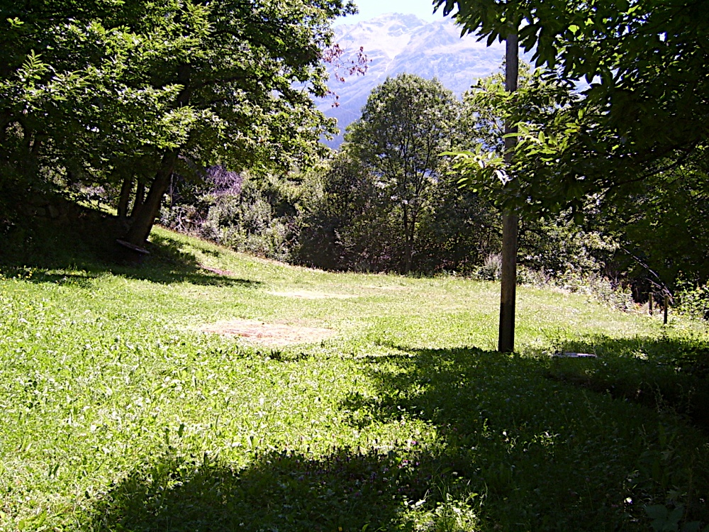 campo_bosco_S4200083